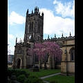 Manchester_Cathedral2.jpg
